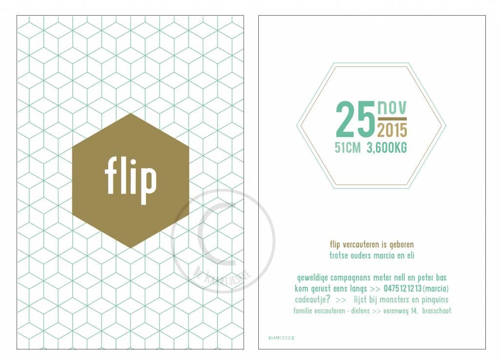 Geboortekaartje Flip
