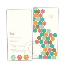 Geboortekaartje Trui