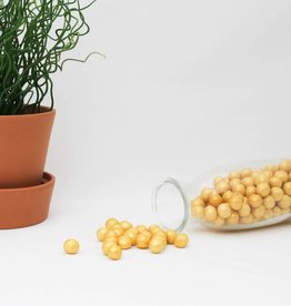 Choco choops groot goud