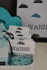 DS_Wanne