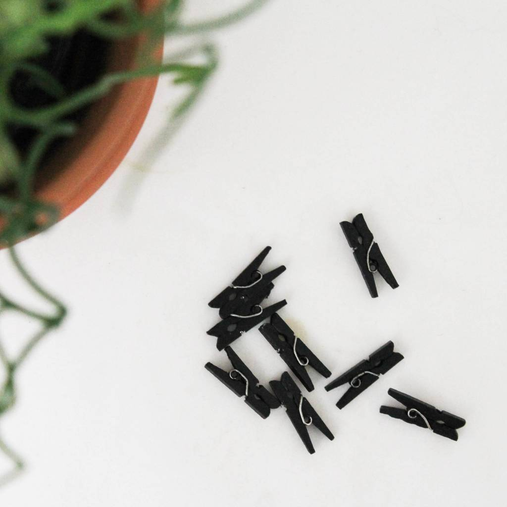 Wasknijper klein zwart
