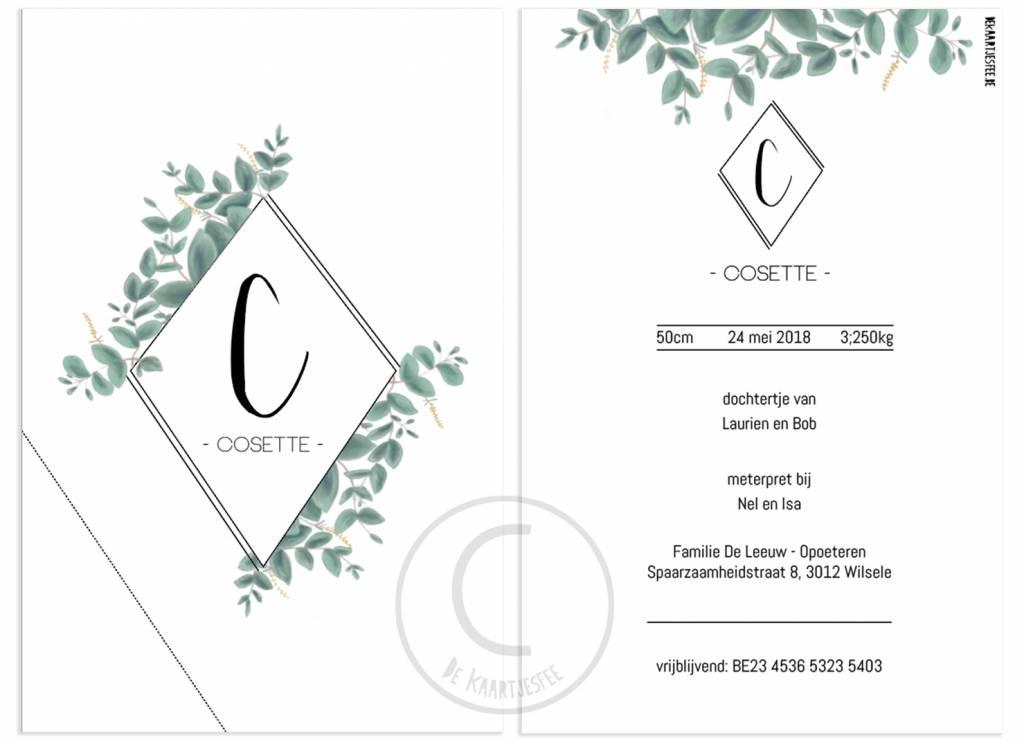 Geboortekaartje Cosette