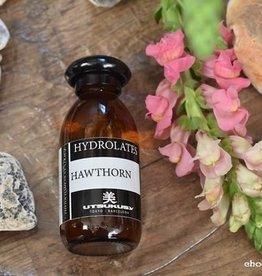 Utsukusy Meidoorn hydrolaat