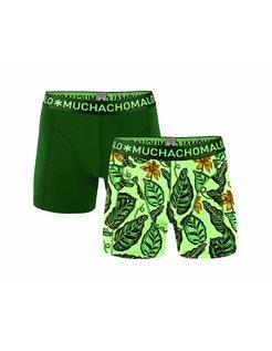 Boxershorts Boys 2-pack Green 1010JGREEN01