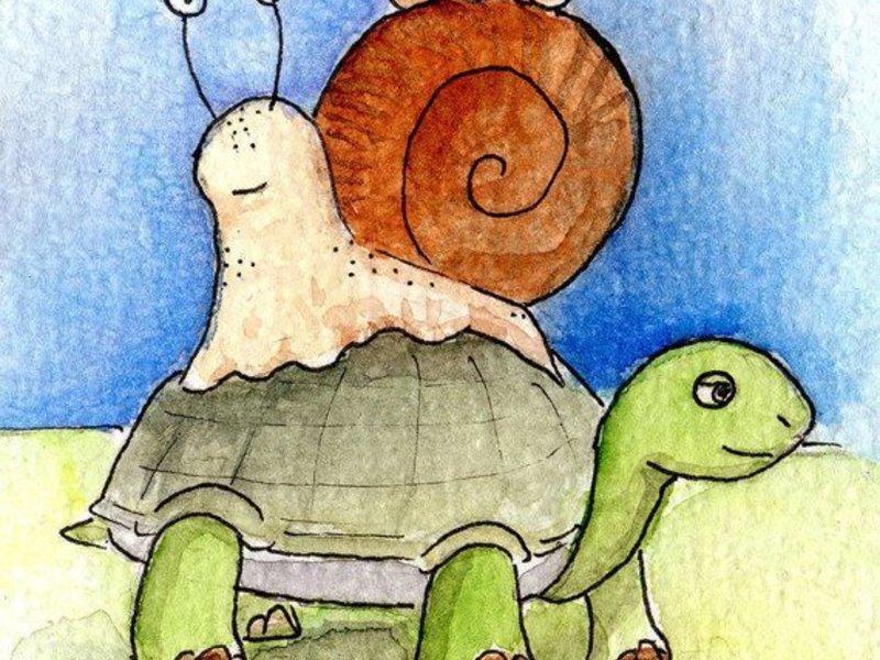 Postcard Turtle & Snail