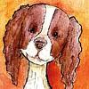 By STEL.EL Postcard Doggie