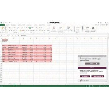 Elearning Excel 2013 Kurs Online Profi