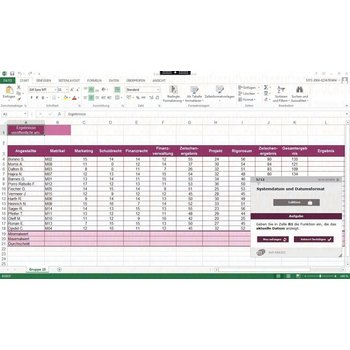 Elearning Excel 2013 Kurs Online Fortgeschrittene und Profi