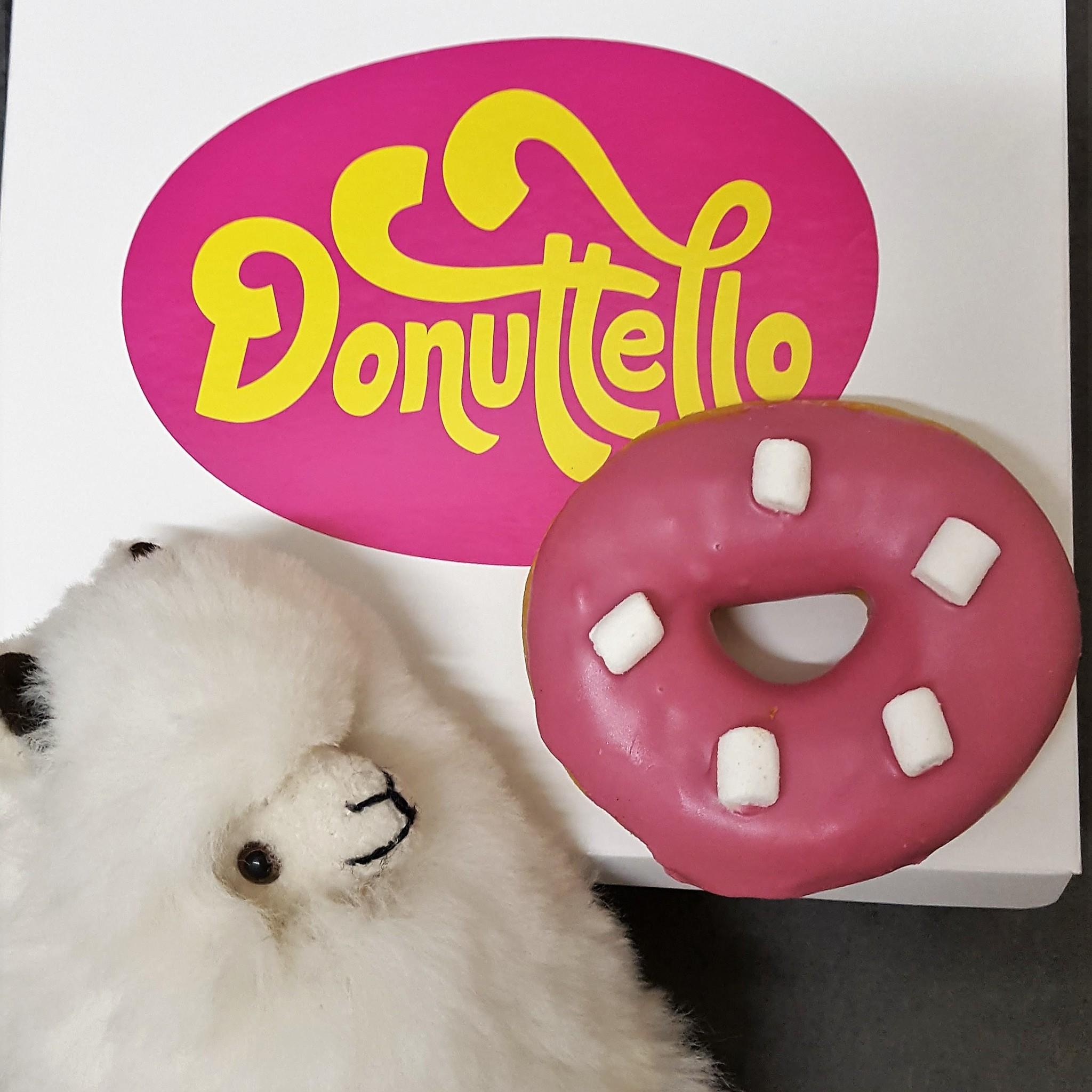 Alpaca met Donut