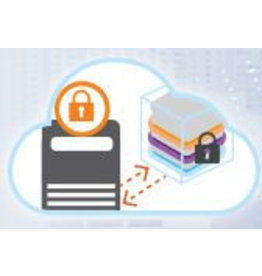 Gemalto \ SafeNet Safenet SAS Cloud Subscriptie