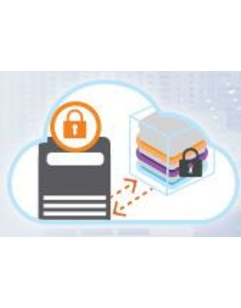 Gemalto \ SafeNet SafeNet Authentication Service (SAS)