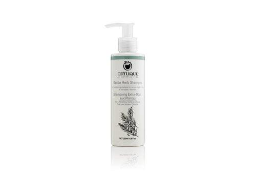 Odylique Organic Shampoo - Gentle Herb