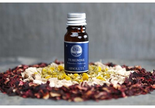 Star Child Essential Oil - Tuberose Absolute