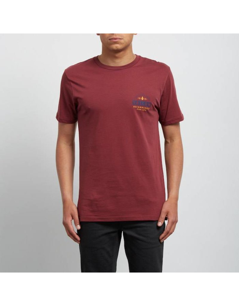 Volcom Volcom Barred Basic T-Shirt