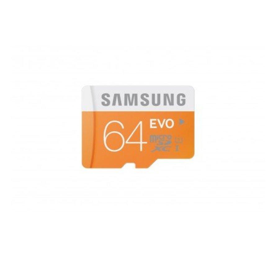 Samsung EVO 64GB micro SD kaart met houder voor IP beveiligingscamera met micro sd slot