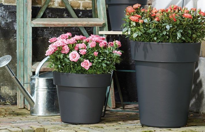 Elho Green Basics Top Planter Hoog