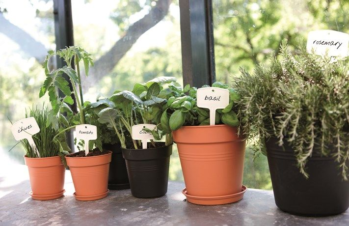 Elho Green Basics Plantlabels