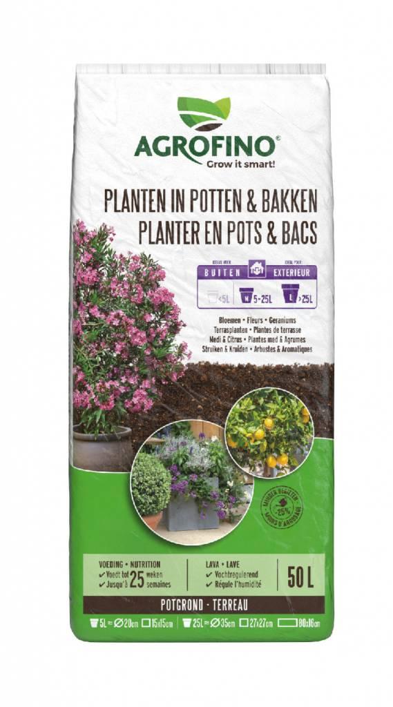 Greenyard Planten in potten en bakken buiten 50 L