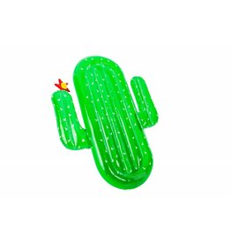 Didak Opblaasbare cactus