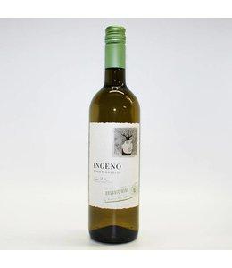 White Wine Ingeno Pinot Grigio