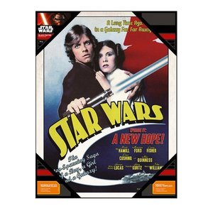 Star Wars Glass Poster Luke & Leia 30 x 40 cm