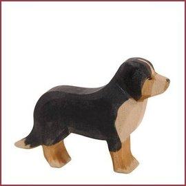 Ostheimer Berner Sennenhond