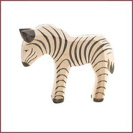 Ostheimer Kleine zebra