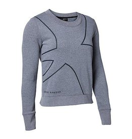 UNDERARMOUR Fav Fleece Crew Graphic-GRY