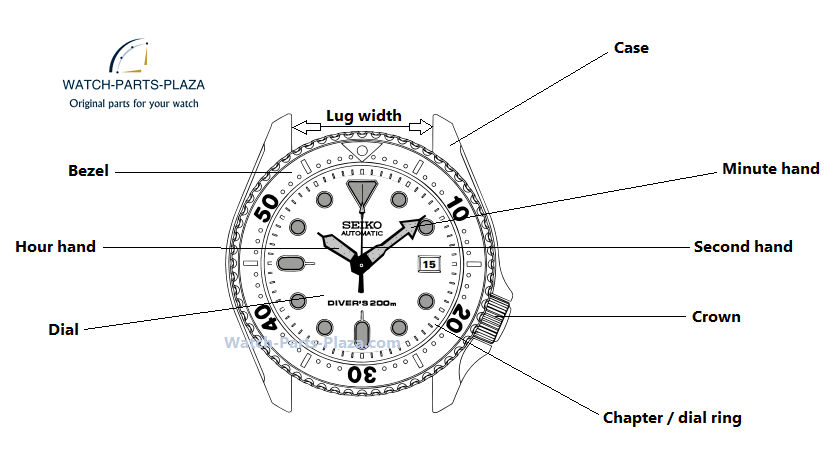 Watch Parts Diagram on