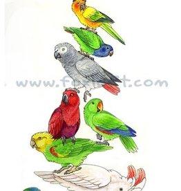 Foxloft Studios Birdstack - Parrots