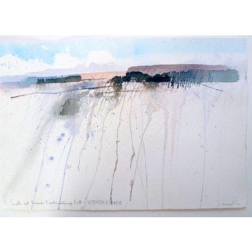 Stephen Livingstone SE towards Burntshieldhaugh Fell