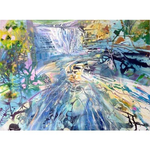 David Wiseman Waterfall Gorpley Clough Woods