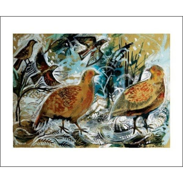 English Partridges card by Mark Hearld