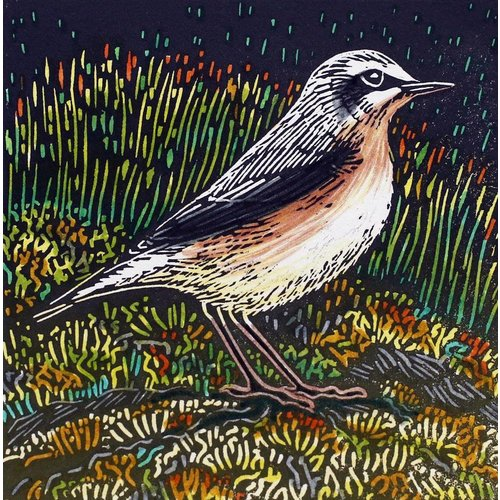 Angie Rogers Wheatear