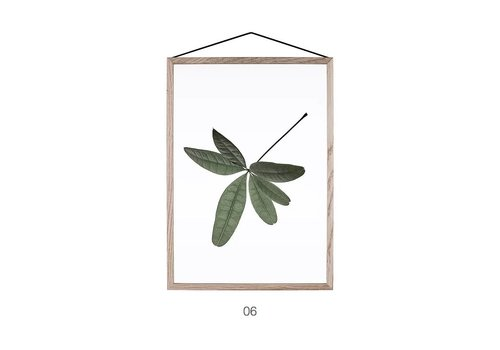 Moebe Floating leaves 06 - A5