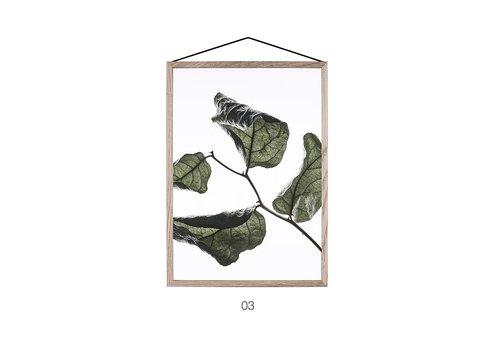 Moebe Floating leaves 03 - A4