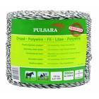 Elephant/Pulsara Polywire Premium vit, 500m