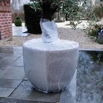 Beschermings bubbeltjesplastic voor planten