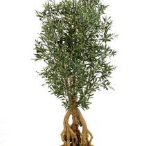 180 cm Künstliche Pflanze Olivenbaum mit verwurzelten Stämmen