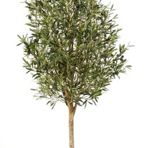 170 cm Künstliche Pflanze Olivenbaum  thick trunk Rebe