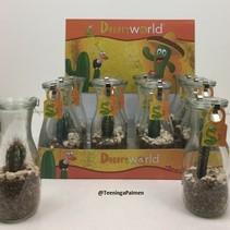 Geschenkkaktus in dekorativer Verpackung