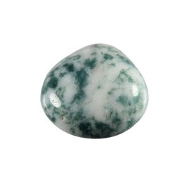 Agaat (boom) steen getrommeld 5 - 10 gram