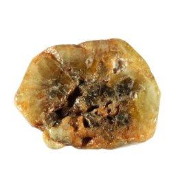 Grossulaar schijfje
