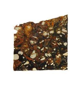 Pallasiet schijfje 4,5 x 4,7 x 0,15 cm / 8,71 gram
