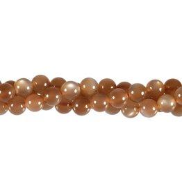 Maansteen (bruin) kralen A-kwaliteit rond 6 mm (streng van 40 cm)