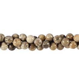 Koraal (fossiel) kralen rond 8 mm (streng van 40 cm)