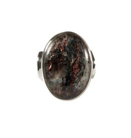 Zilveren ring astrofylliet maat 18 | ovaal 2,4 x 1,8 cm