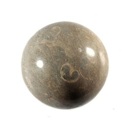 Koraal (fossiel) bol 78 mm