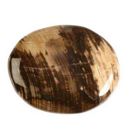 Versteend hout steen plat gepolijst