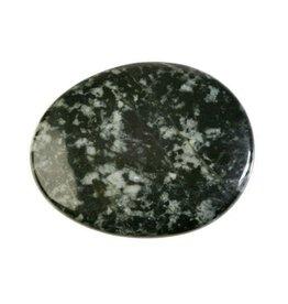 Stonehenge (Preseli) bluestone plat gepolijst